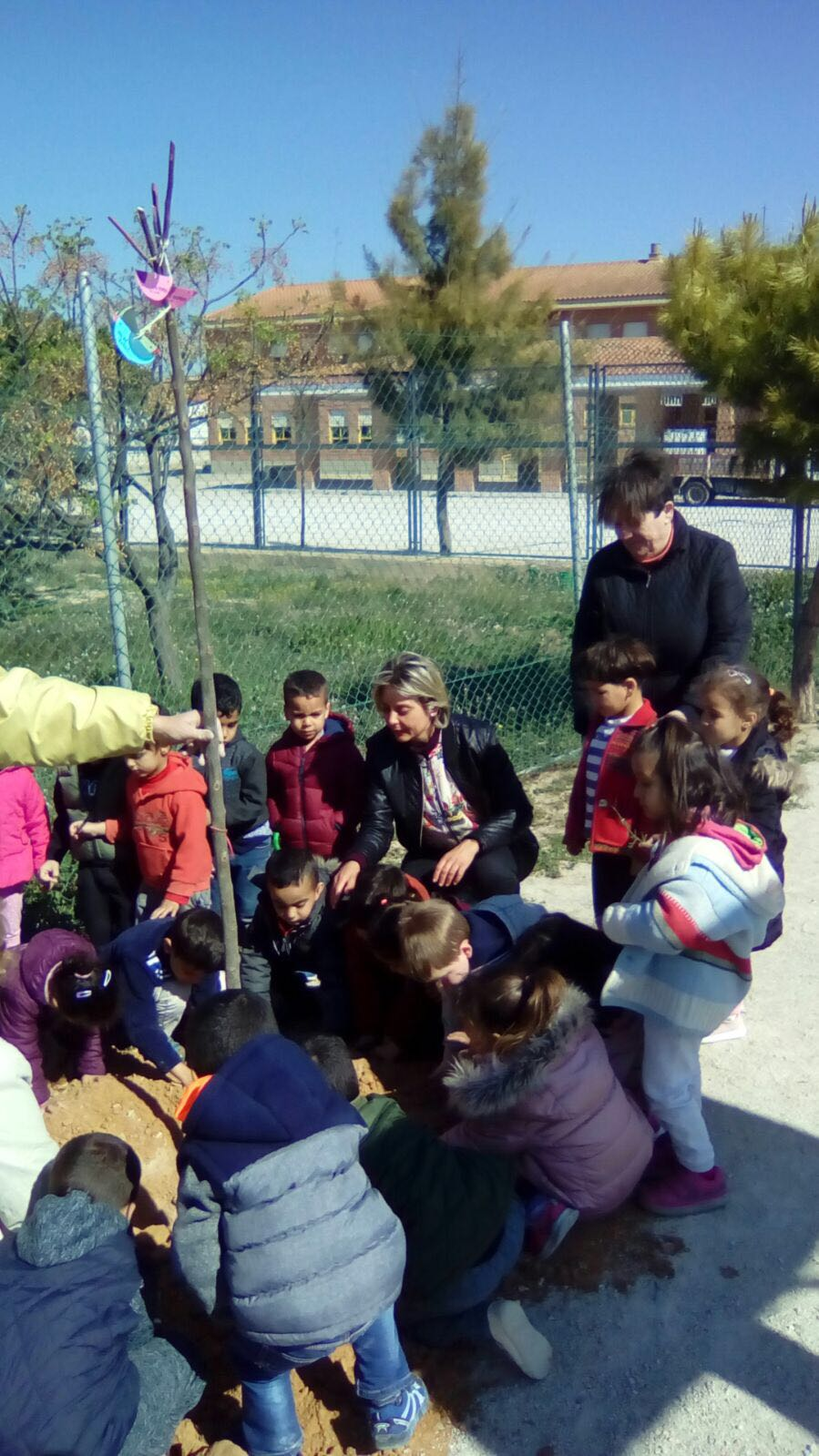 Plantation of trees and plants in the CEIP